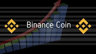 Binance Coin - CEO Zhao Changpeng News - Coin Burn - Q2 Profits -Cryptocurrency Exchange
