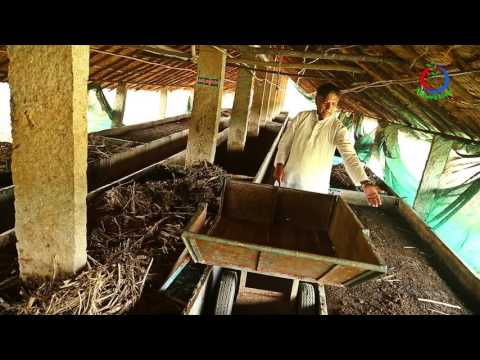 Natural Farming | How to make use of indigenous technology | Narasimhappa