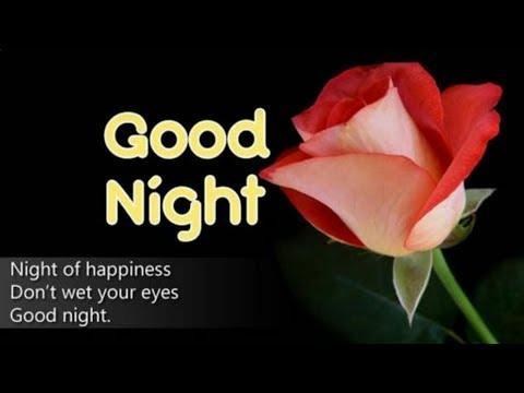 🌹Good Night , Whatsapp Status , Love Ringtone, Wishes Song🌹