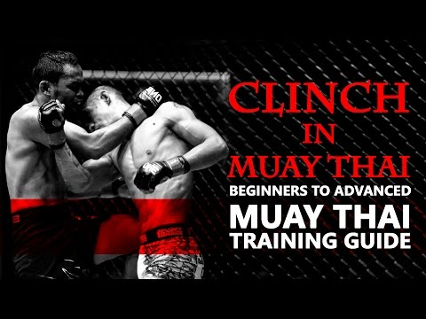 Muay Thai Training Guide: Clinch