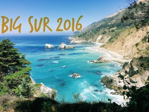 Travel Diaries 2016: Sleeping group of seals at Big Sur!