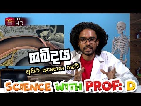 Prof D -  Sound - ශබ්දය