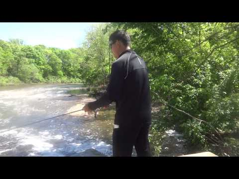 Fishing at Tyler State Park (Newtown, PA)