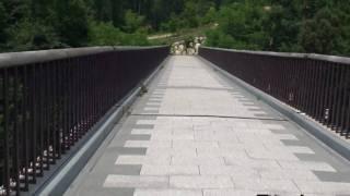 アルプス公園 森のかけ橋