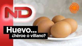 ¿Es bueno para la salud el consumo de huevo?