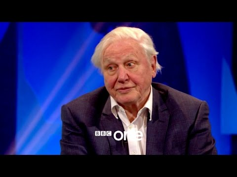 Attenborough at 90: Trailer - BBC One