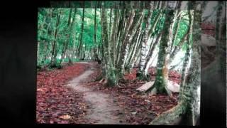 アメリカ生まれのJADE YOGAヨガマットはなぜ、最高の天然ヨガマットなの...