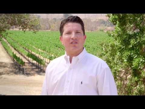 Discover California Wines: Sonoma