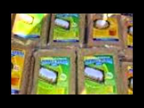tiwul-instan-|-makanan-tradisional-jawa