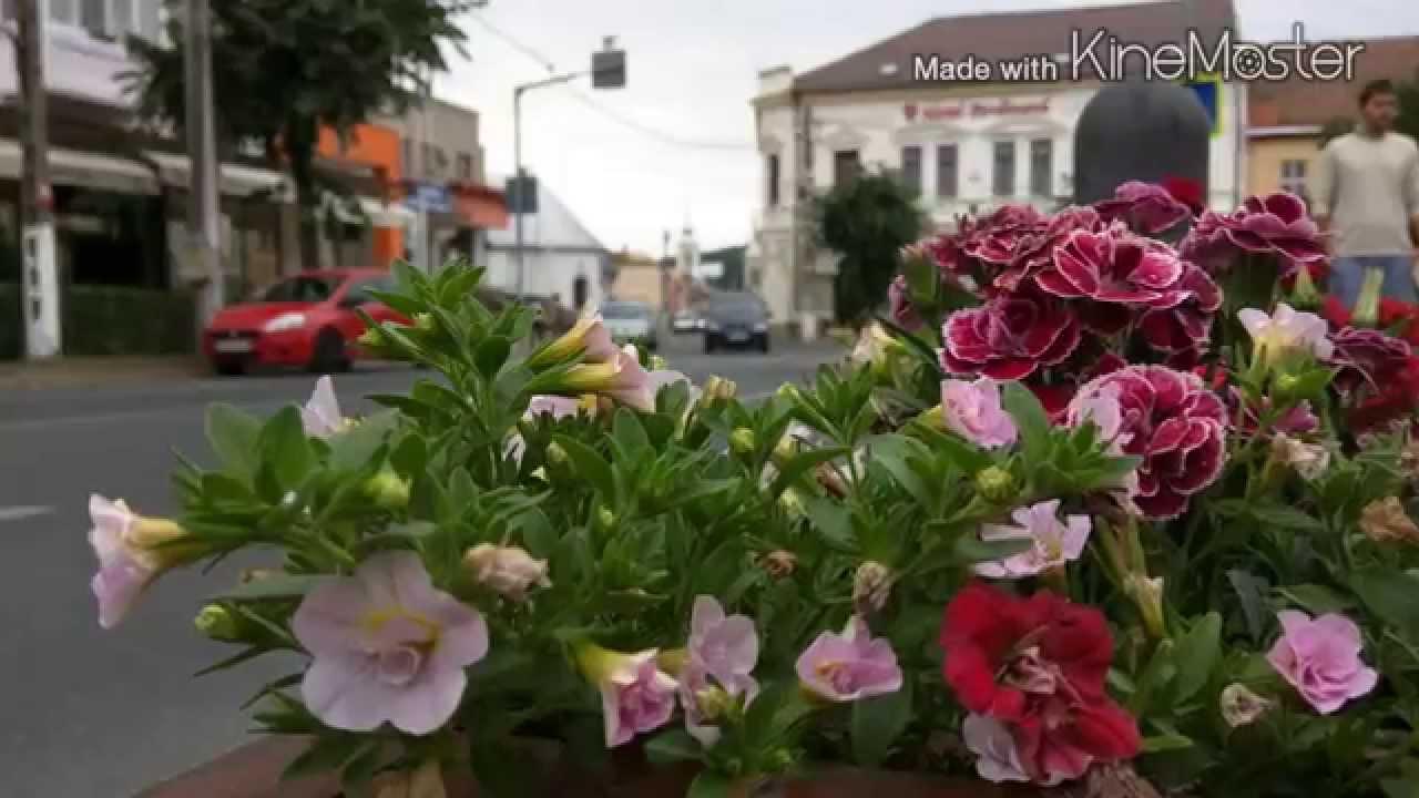 Nexus 6 - Photo Camera samples - YouTube
