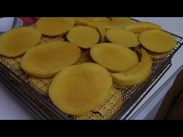 Làm Xoài Sấy Tại Nhà Ở Mỹ P2 Dried Mango | NVTC2 MVI 2337 | Trái Cây Sấy | Hoa Quả Sấy