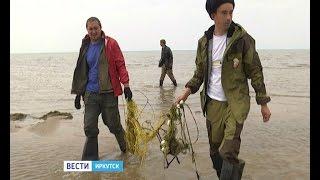 Брошенные сети, в которых погибают животные и птицы, убирают на берегу Байкала,