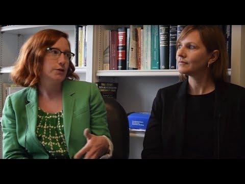 Professors Gail Henderson & Pamela Beach - Research Project