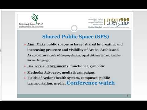 Arab Citizens in the Public Sphere: Mainstream Media and Professional Conferences