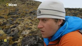 El archipiélago helado de Rusia Nat Geo wild HD en español thumbnail