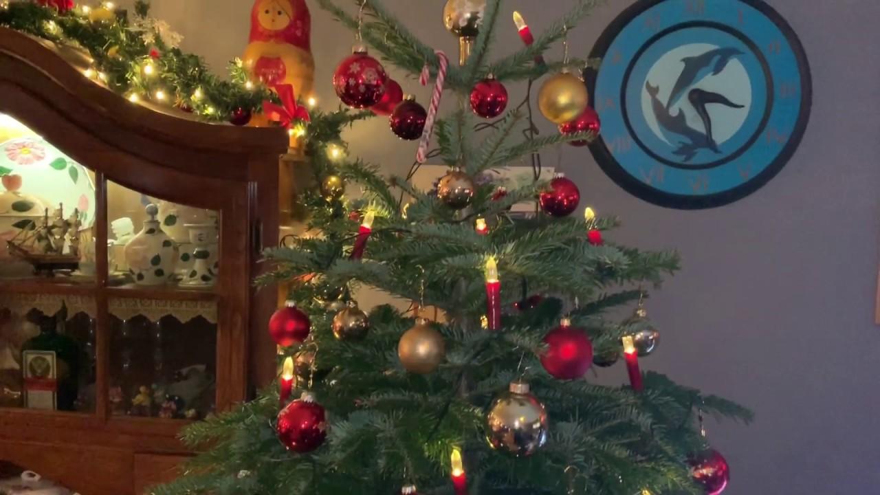 Wann Weihnachtsbaum Aufstellen.Weihnachtsbaum Lebendig Aufstellen Und Christbaum Mit Wurzeln Schmücken Tannenbaum 2018 Anleitung