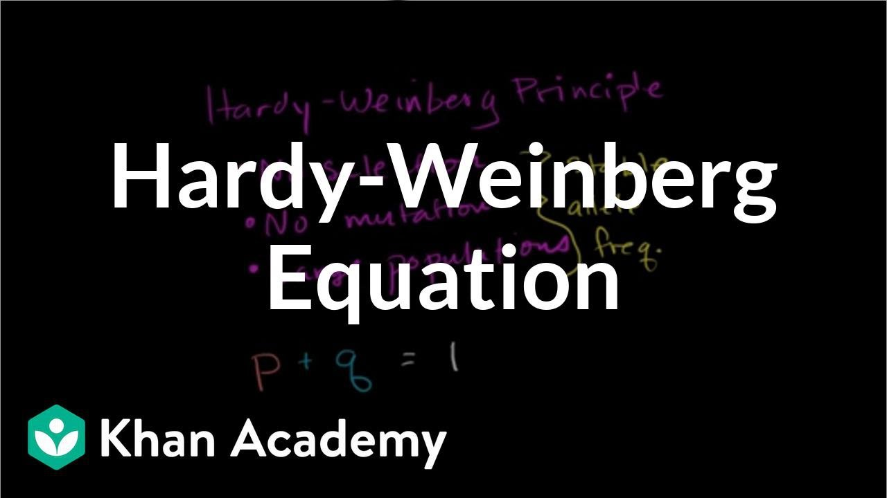 how to use hardy weinberg equation