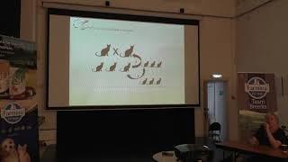 Работа с окрасами кошек - Семинар Светланы Пономаревой.