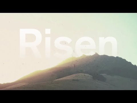 We Will Rise [Official Lyric Video]