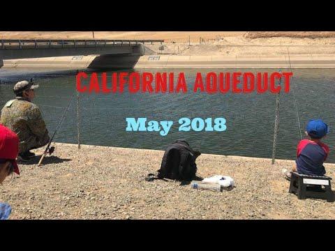 Bait & Wait @California Aqueduct May 2018 Super Windy day