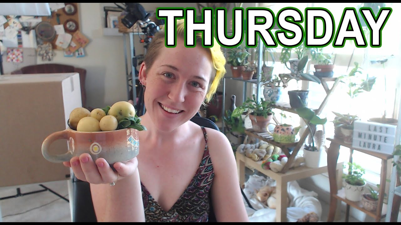 Thursday: the FIRST Garden Harvest, Happy Mail & YOU can ADOPT a chicken :)  | LML 384