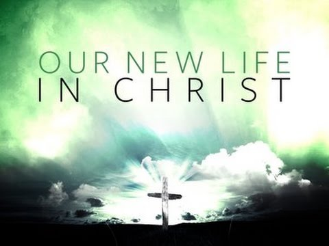 Image result for new life in christ