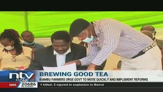 Kiambu tea farmers urge govt to pass new regulations