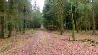 DJI Phantom - Im Wald und auf der Heide