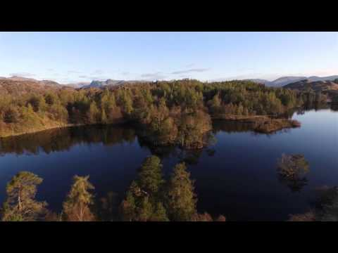 Tarn Hows The Lake District