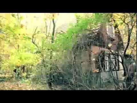 Das kleine Haus im Wald