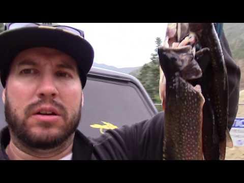 Fishing Cabresto Lake Diesel Fish Mish