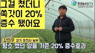 [한국농수산TV]  그 걸 쳤더니 쑥갓이 20% 증수 …