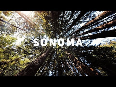 Sonoma County - Beauty Ranch, Coastal Cliffs and Locations on the Vineyards