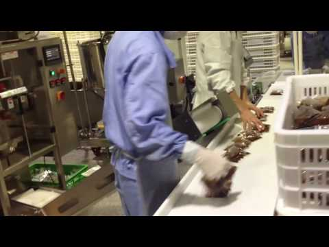 PM-320B Food Production Line