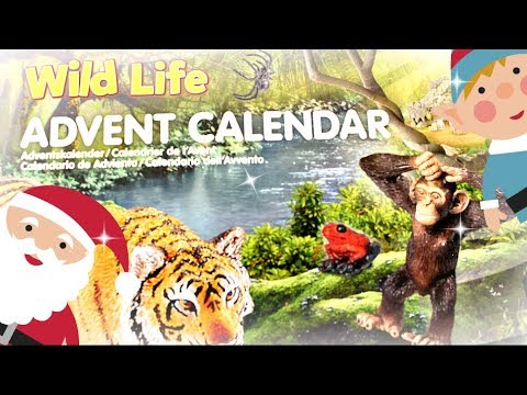 schleich wild life jungle adventskalender auspacken f r kinder und sammler 9999 dinge youtube. Black Bedroom Furniture Sets. Home Design Ideas