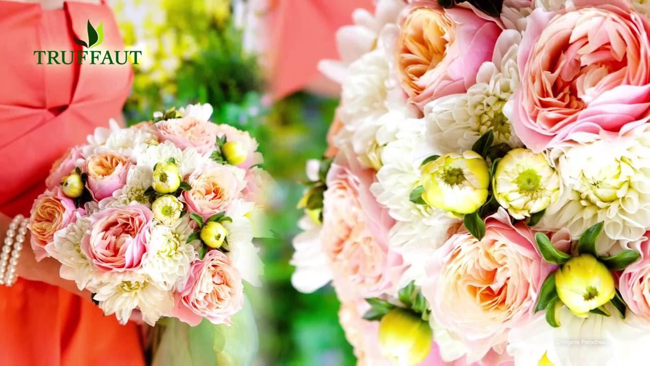 Les plus beaux bouquets de fleurs d 39 t jardinerie for Les beaux bouquets de fleurs