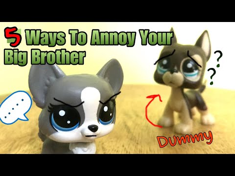 LPS 5 Ways To Annoy Your Big Brother!