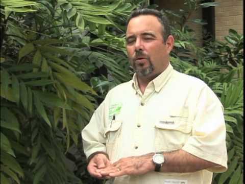 Virtual Sod Farm Tour Council Growers Sod