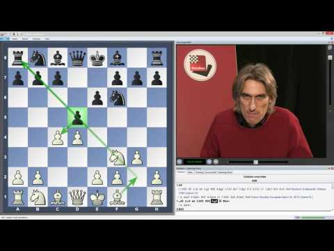 Daniel King - Power Play 24: A Repertoire for Black against the Catalan