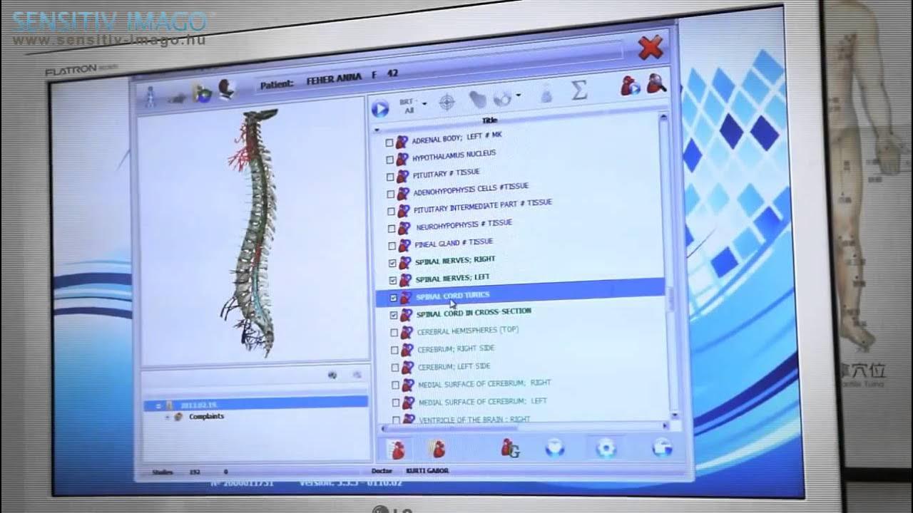 Компьютерная диагностика организма аппарат