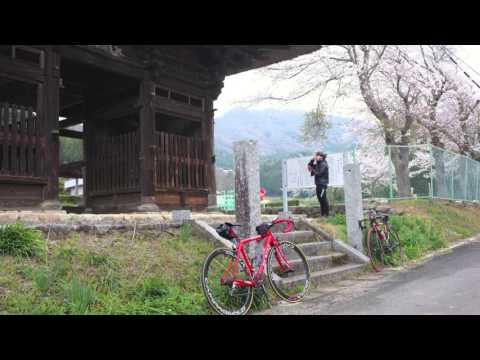 りんりんロードサイクリング2013
