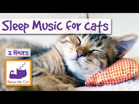 2 HOURS Of Sleep Music For Cats. Try It Today And Be Surprised!