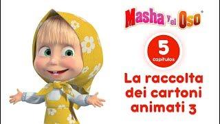 Masha y el Oso - Сolección 5 📺  Dibujos Animados en Español!