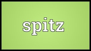 Spitz Meaning