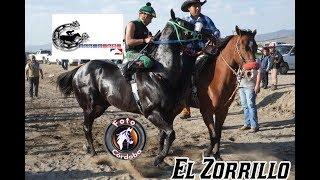 EL ZORRILLO VS LA PIGUA VS LA RÉMORA VS EL DE LA A 3ER HIT ABIERTO