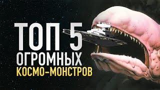 ТОП 5 самых больших космических существ в Звездных Войнах!   Star wars