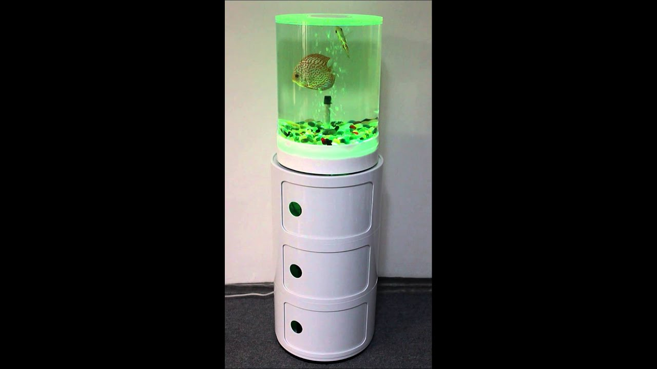 Discus fish in acrylic cylinder tank youtube for Acrylic vs glass fish tank