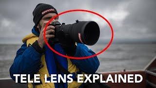 tele lens explained 📷 best lens for sport wildlife photography