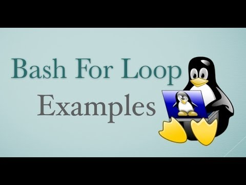 Bash Loop Examples