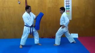 Ushiro geri/spin Back kick tutorial